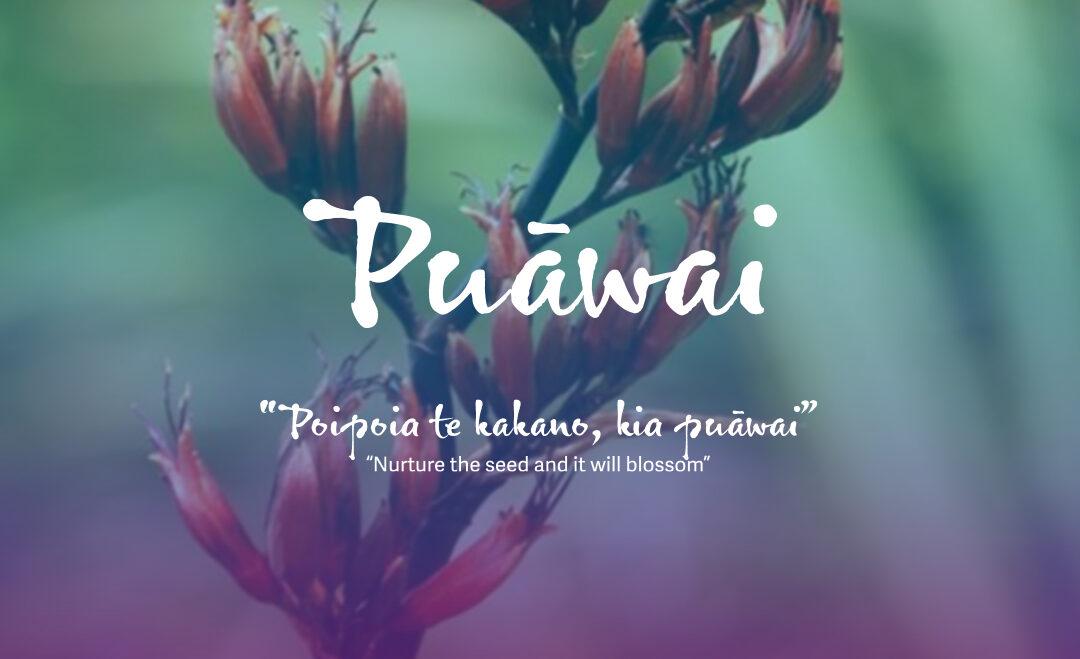 Puāwai Exhibition